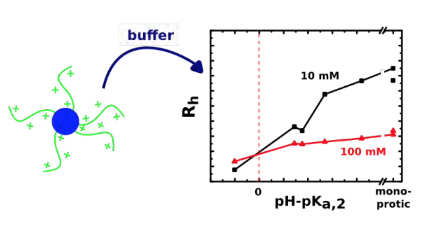 Polyprotic Buffers Affect Polyelectrolyte Micelles
