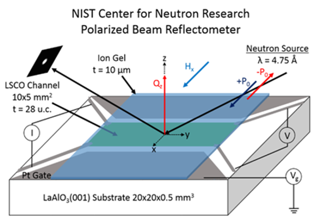 MRSEC IRG-1 work featured in Neutron Scattering Society of America Highlight